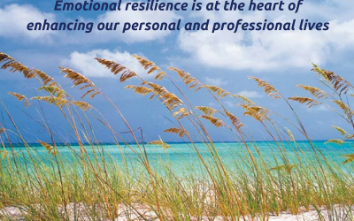 Emotional Resilience: choosing to respond rather than reacting